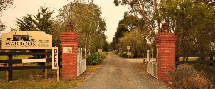 Welcome to Warrook Farm